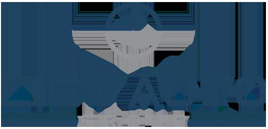lyft auto logo